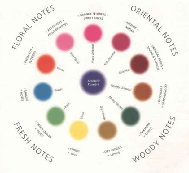 paleta aromelor Cum să alegi parfumul potrivit (partea a doua)