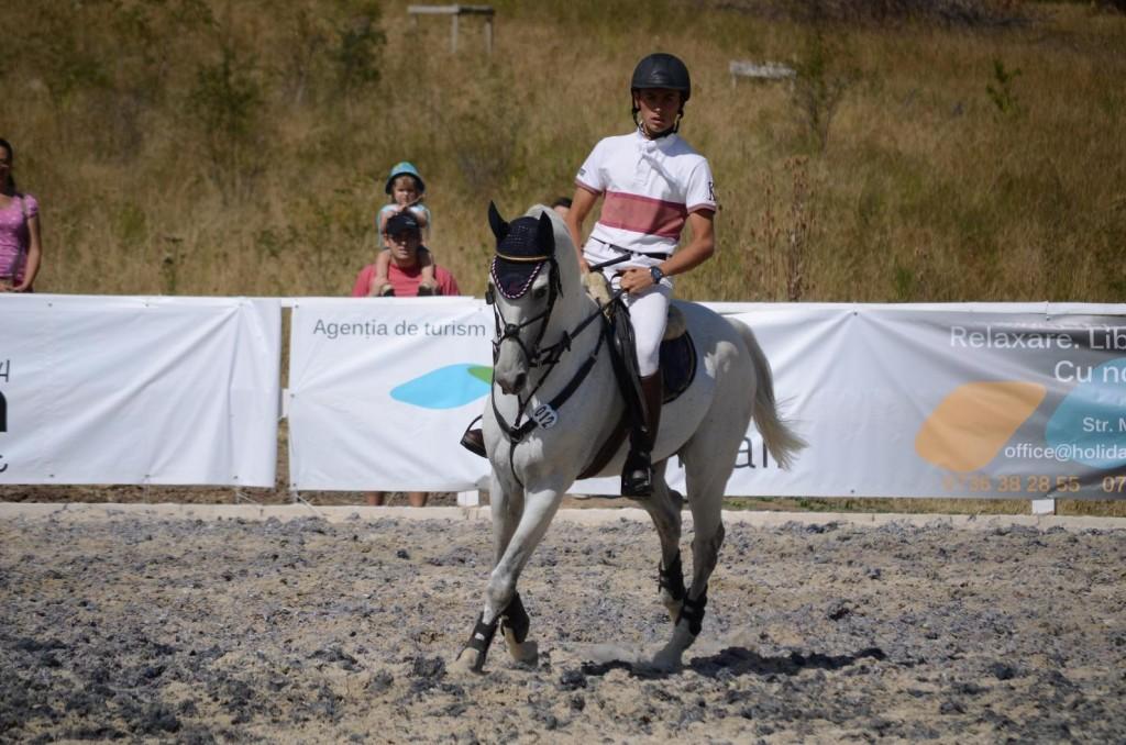 Napoca Sport Horse