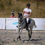 Cupa Napoca Sport Horse