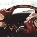 Trei branduri mari de mașini și vestimentația publicului lor țintă