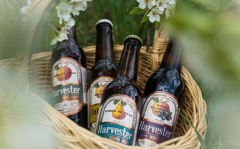 Harvester - cidru artizanal făcut în Transilvania